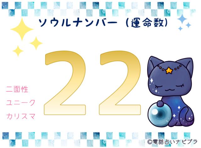 ソウルナンバー(運命数)22