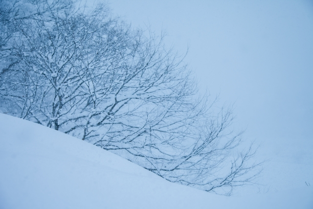 夢占い吹雪