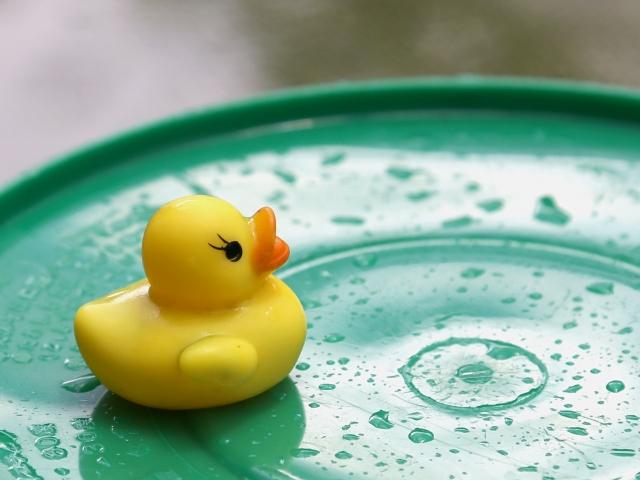 夢占い水が入っていないプールの夢