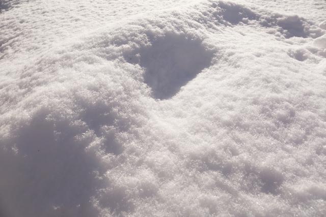 夢占い雪に埋まる夢