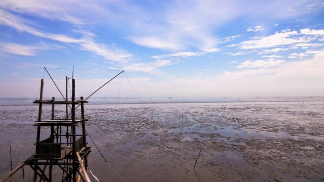 海で引き潮を見る夢占い