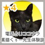 電話占いココナラ黒猫くぅー(くろねこくぅー)先生体験談