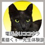 電話占いココナラ黒猫くぅー先生体験談