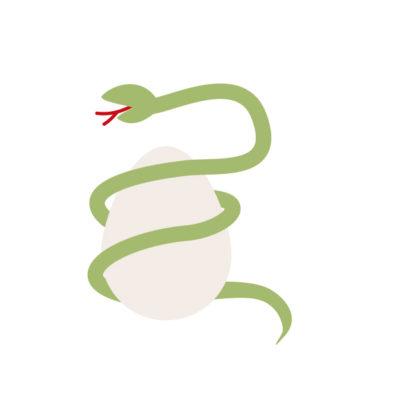 蛇の卵が印象的な夢占い