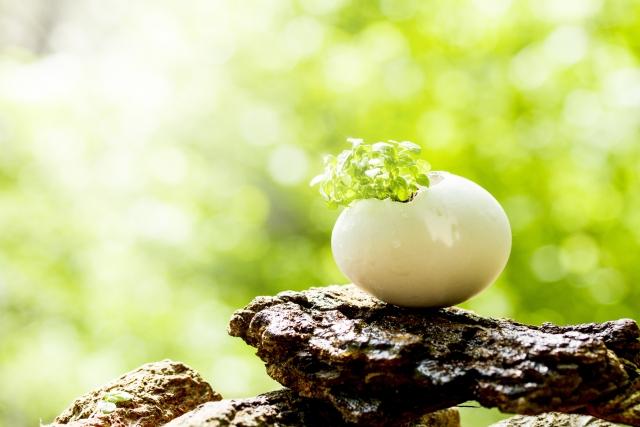 守護霊が目指しているのはあくまで魂の成長