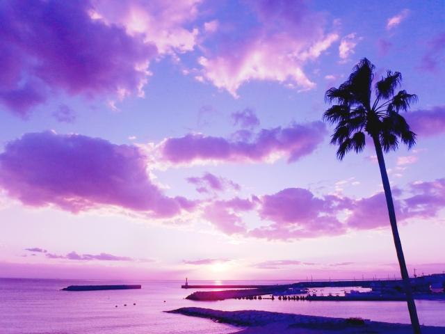 紫色が印象的な夢占い