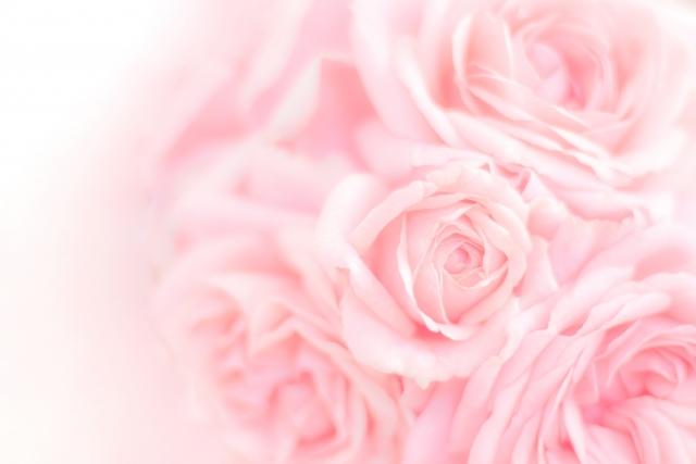ピンクが印象的な夢占い
