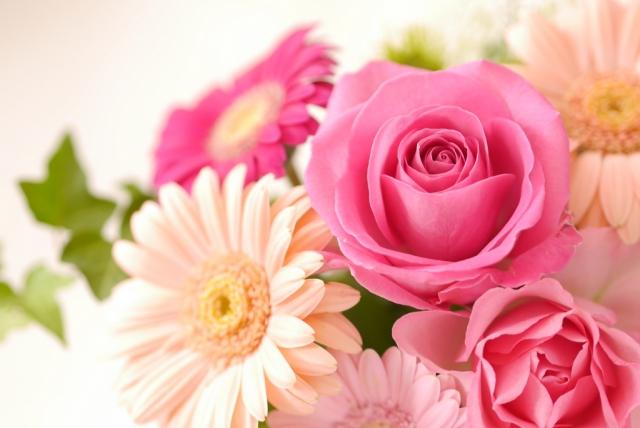 【夢占い】花は女性的エネルギーや恋愛の象徴!種類や色によっても意味が変わる!