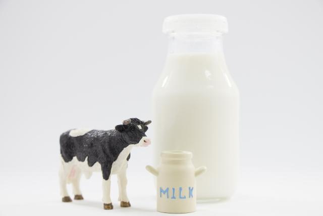牛乳の夢占い