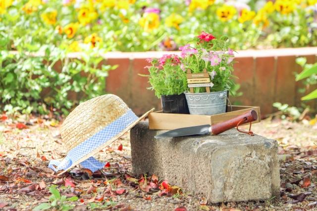 花壇の夢占い