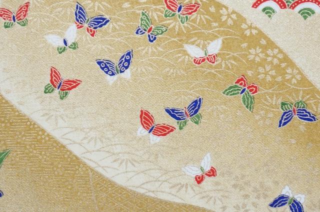 カラフルな蝶の夢占い