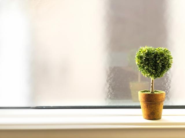 【夢占い】窓の夢は心の目のシンボル!これから何をすべきなのかを教えてくれている!