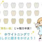 黄色い歯じゃ魅力半減!ホワイトニングで美しさに磨きをかけよう!