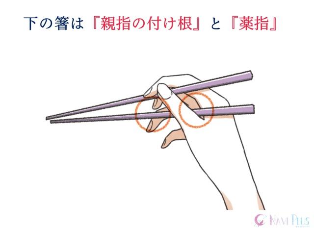 下の箸は『親指の付け根』と『薬指』
