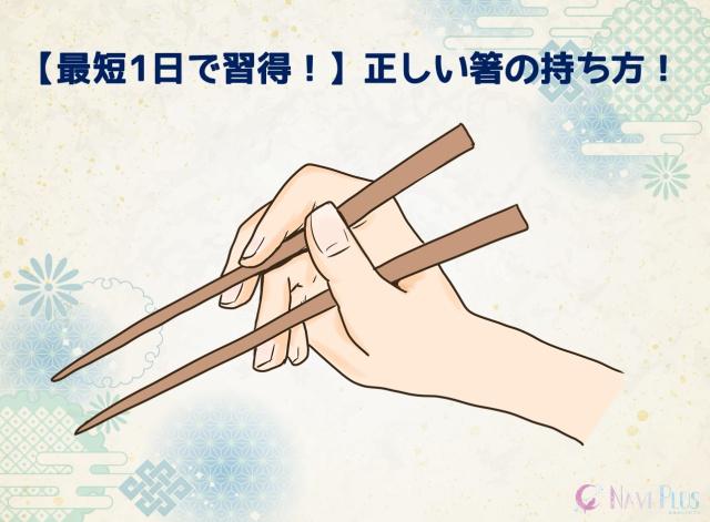 【大人は最短1日で直せる!】箸の持ち方をイラストで解説!簡単に矯正して綺麗な箸の持ち方をマスターしよう!