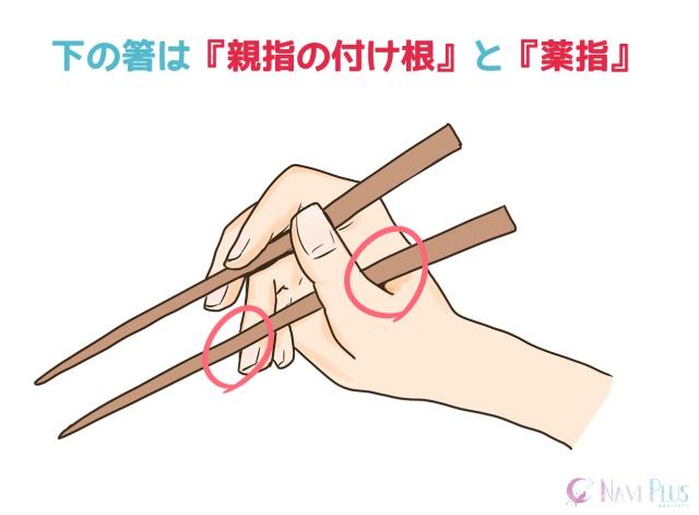 正しい箸の持ち方イラスト3