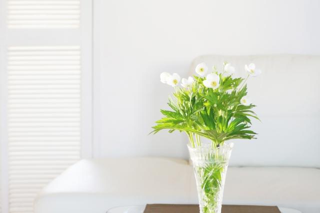 風水効果の高い花の選び方と飾り方!ポイントは種類よりも形や色!