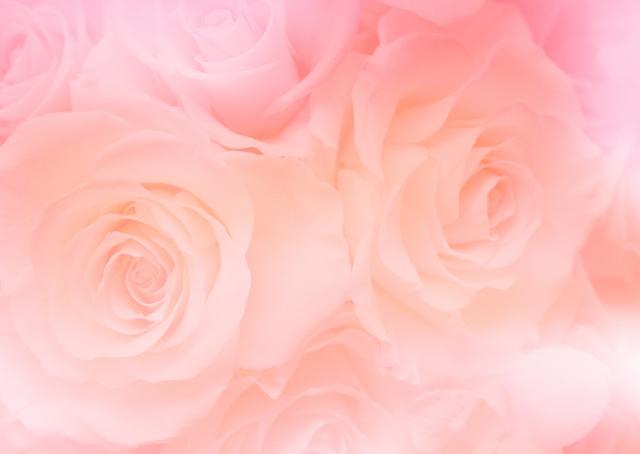 女性の運気アップ効果が高い『ピンク』
