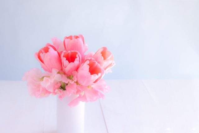 花や観葉植物が置かれている
