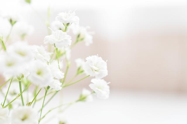 小さい花は『健康運アップ』