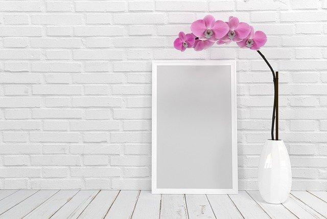 背の高い花は『美容運アップ』