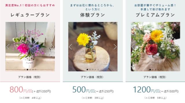 bloomee life プラン