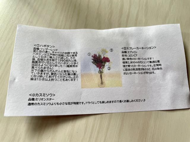 bloomee Life 体験コース(500円)届いたお花の解説