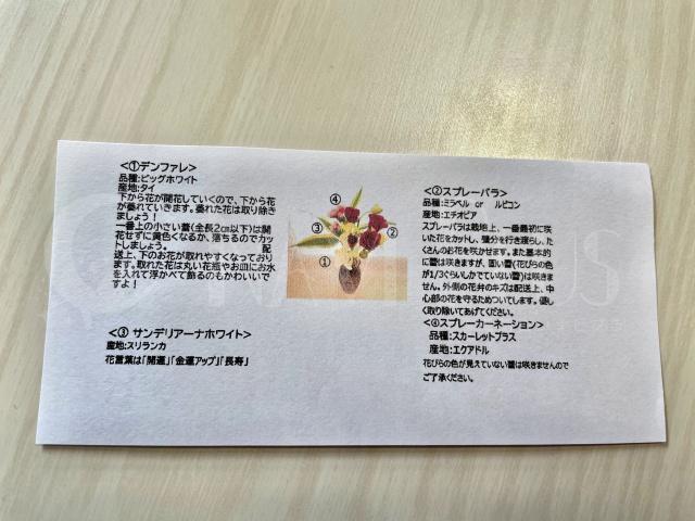 bloomee Life レギュラーコース(800円)のお花2