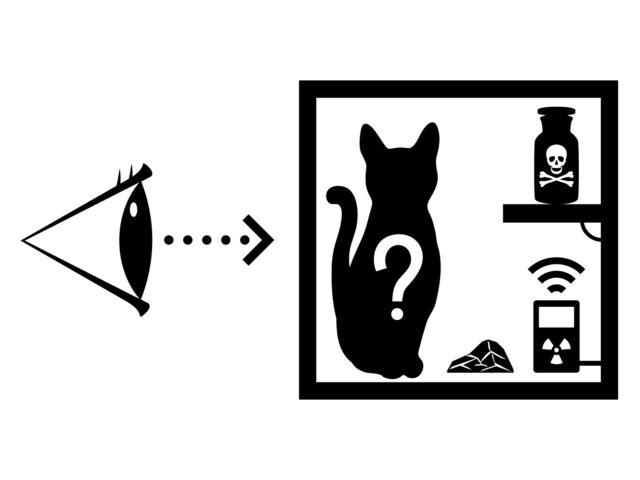「箱を覗かない限り、猫は生きていると同時に死んでもいる」
